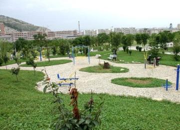 九江庐山区300.00亩林场转让价格面议