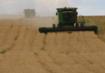 1500亩农用地转让 面议
