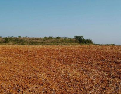 12500亩农用地转让 8000000元