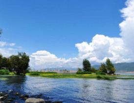 江西 九江 浔阳区 湖泊 10亩 出租