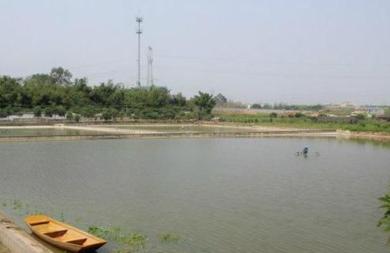 海南直辖县级行政区划文昌20亩水域及水利设施用地 — 坑塘水面转包