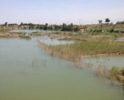 重庆巫山县150亩水域及水利设施用地 — 坑塘水面出租