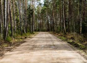 山西晋中榆次区10000亩林地 — 其他林地转让