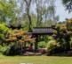 转让:梅州市350亩柚子果园基地