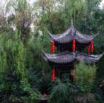 转让:广州增城区300亩果园鱼塘农场