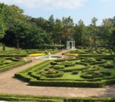 转让:广州花都区100亩花木场
