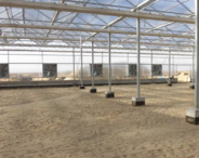 潍坊寒亭区河滩镇45亩现代化标准养鸭场2个育雏棚6个育肥棚420万转让27年