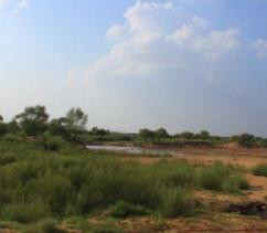 5000亩其他土地转让 可做光伏大型养殖项目