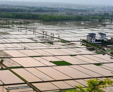 6000亩农用地转让 面议