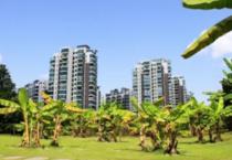 江西省景德镇市53亩在建商住地出售